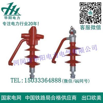 防雷针式亚搏官网平台登录FEG-12-5A
